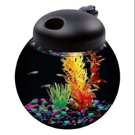 44 Best Fish Tanks Images On Pinterest Fish Tanks