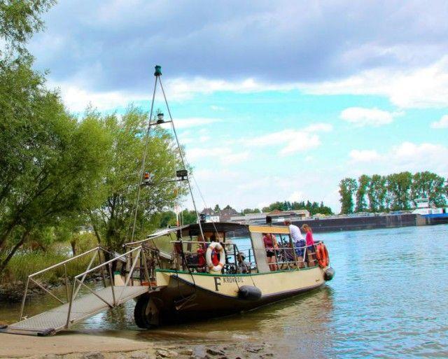 EIN KLEINES, GRÜNES PARADIES - KINDER UND HUNDE FREUNDLICH Ein richtig schönes und traumhaft grünes Fleckchen Erde. Am Wochenende ist hier bestimmt die Hölle los, aber wir waren jetzt in den Sommerferien während der Woche dort und hatten die Groov quasi für uns. Es hat uns wirklich sehr gut gefallen hier mitten in Köln.