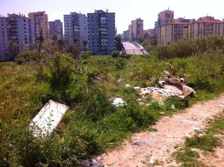 UPyD denuncia la existencia de un vertedero ilegal entre La Ermita y San José Artesano