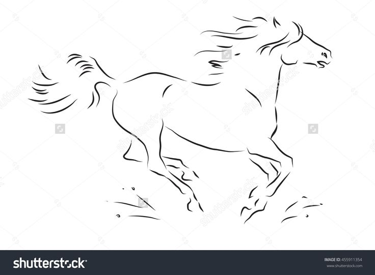 Sketch Of Silhouette Of Galloping Horse - Vector Illustration - 455911354…