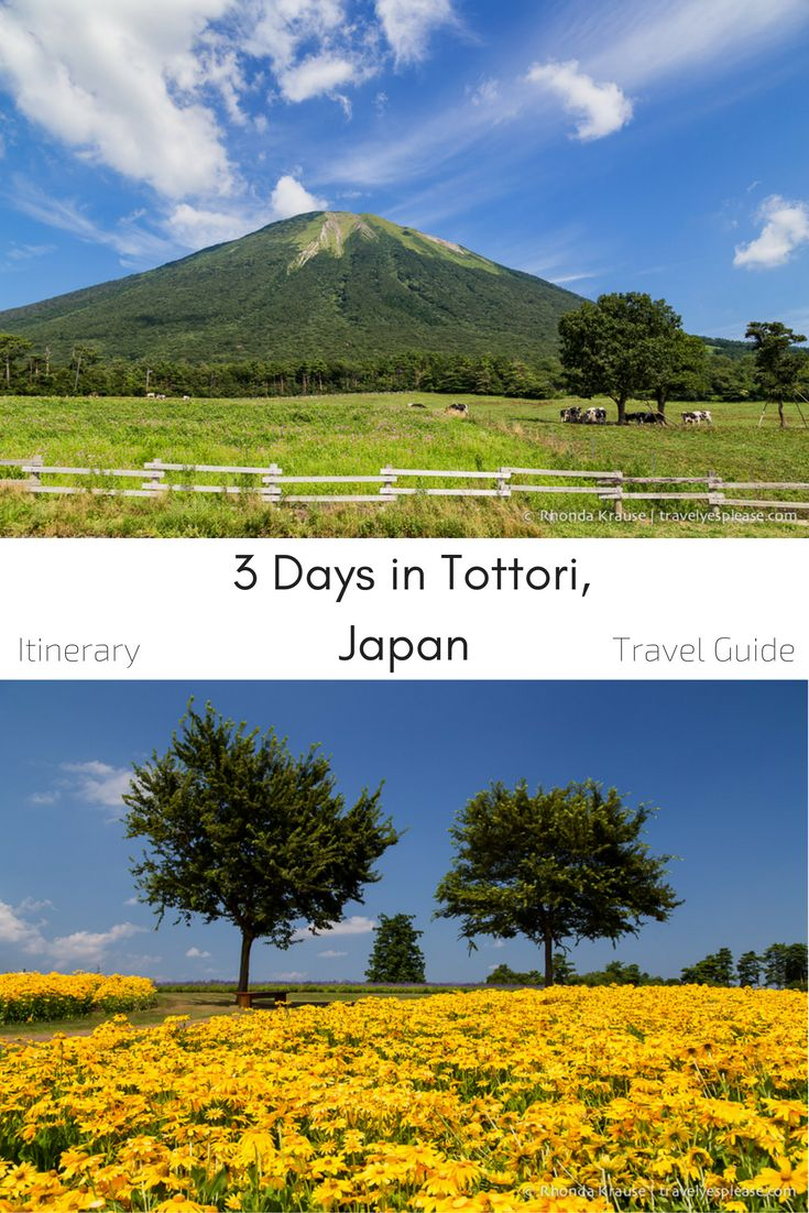 travelyesplease.com | How to Spend 3 Days in Tottori, Japan- My Itinerary (BLOG POST) | Tottori prefecture, Japan
