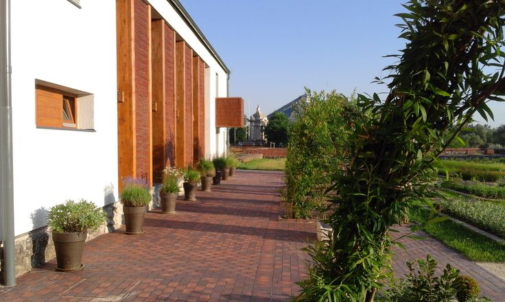 The herb house and the ornate sidewalk with the living willow buildings
