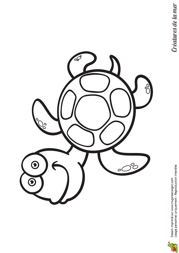Connu Plus de 25 idées uniques dans la catégorie Coloriage tortue sur  ND03