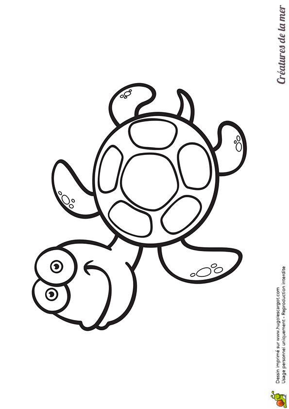17 best images about coloriages enfants on pinterest - Coloriage tortue ...