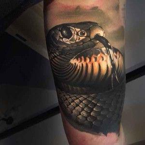 1000 ideas about snake tattoo on pinterest tattoos cobra tattoo and tattoo flash. Black Bedroom Furniture Sets. Home Design Ideas
