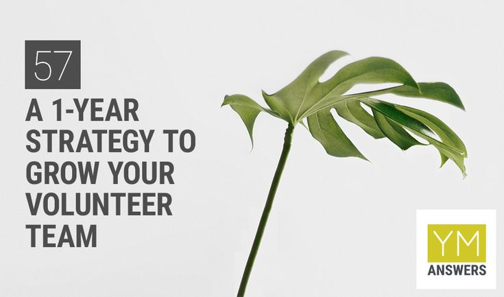 57 a 1year strategy to grow your volunteer team in your