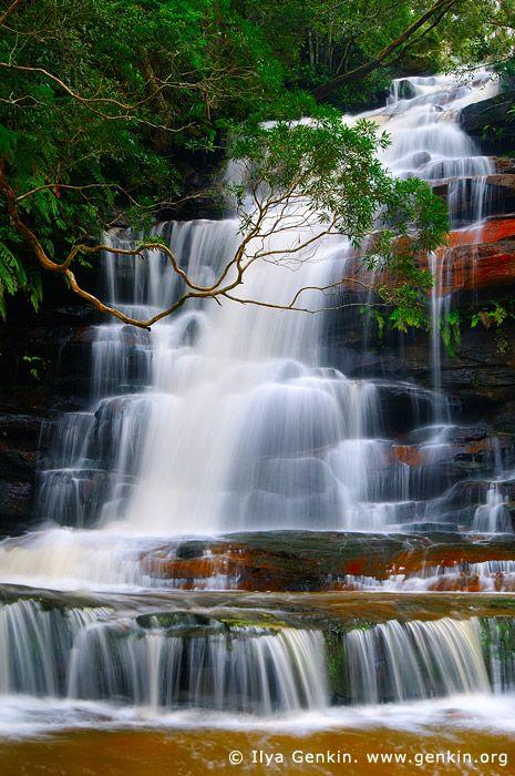 Upper Somersby Falls, Brisbane Water National Park, Central Coast, NSW, Australia