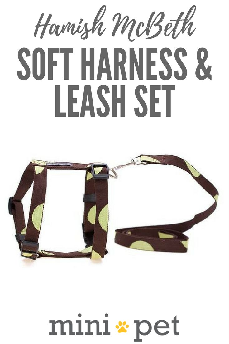 [SALE] Step your Mini pooch out in style with our fashionable soft dog harness and leash, designed for comfortable, safe and gentle walking. The green dot harness is a sweet design, featuring brown with contrasting big green dots. Available in three sizes for small dogs. https://minipet.com.au