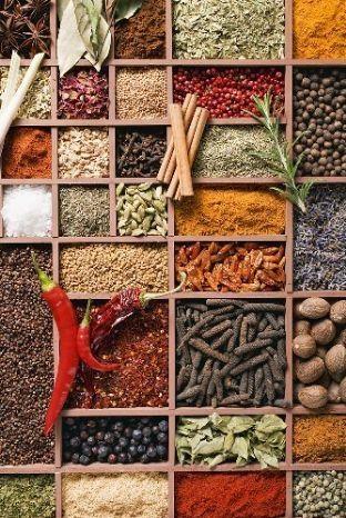 O Brasil possui cerca de 12.000 ervas aromáticas e medicinais ...