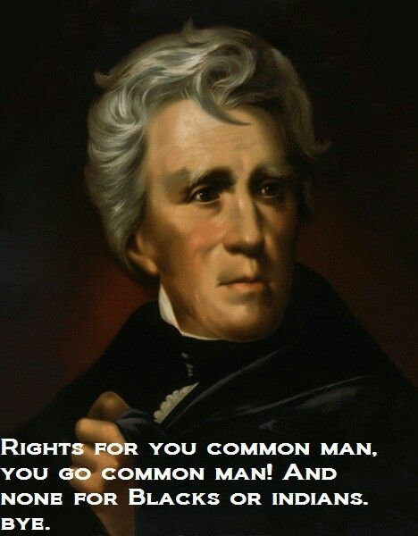 Military Commander Politician And Seventh President Of The United States Andrew Jackson Dominated American Politics In