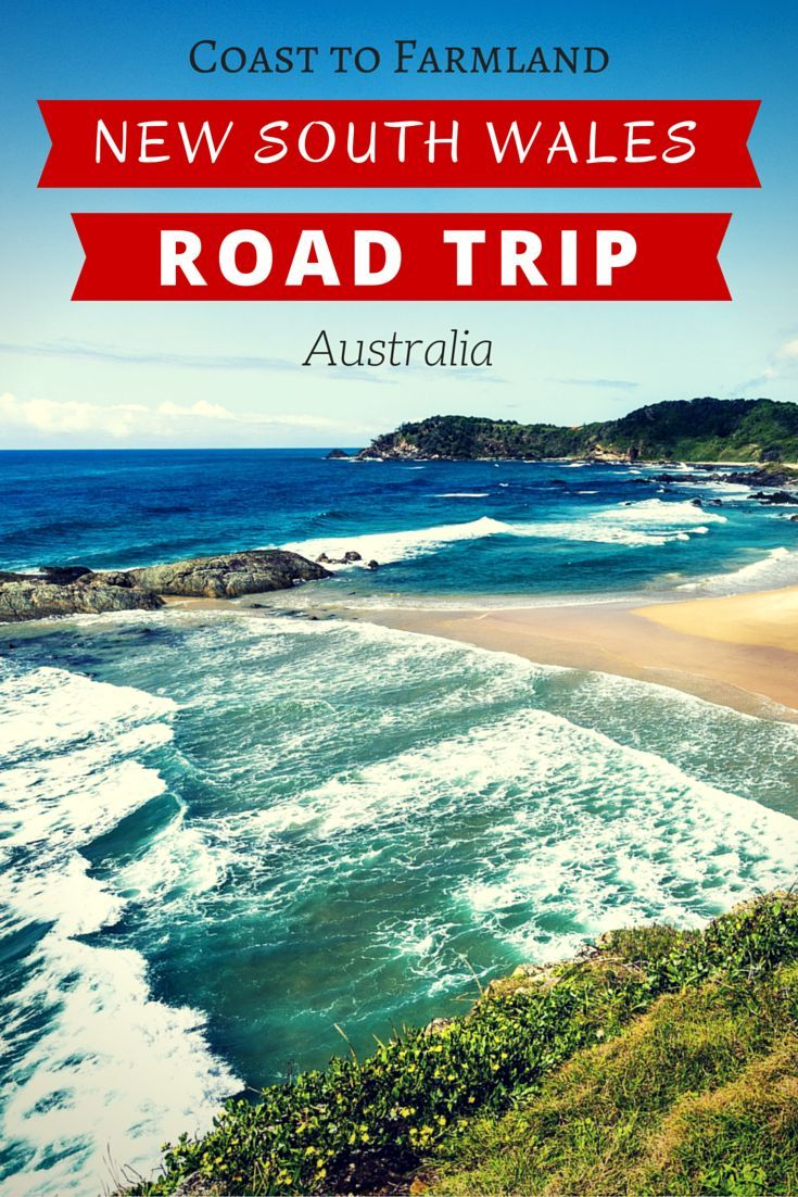Going on a road trip in Australia is one of the coolest adventures you can do. Make sure you explore New South Wales on the east coast of Australia, home to the most beautiful beaches and forests imaginable! #australiatrip #australia #roadtrip