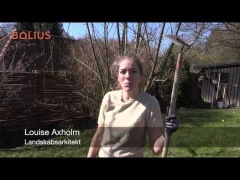 VIDEO: Fjern mos med en haverive