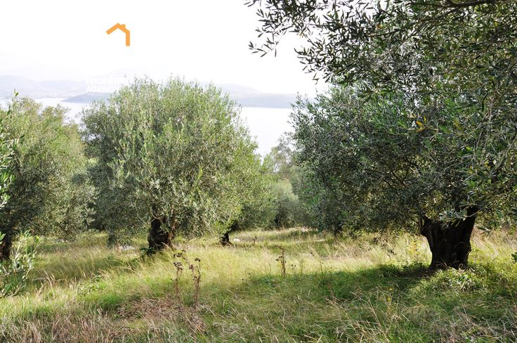 Plot of land for sale in Agios Stefanos North East Corfu-CPA 3617 From: www.cpacorfu.com/en/properties/3617