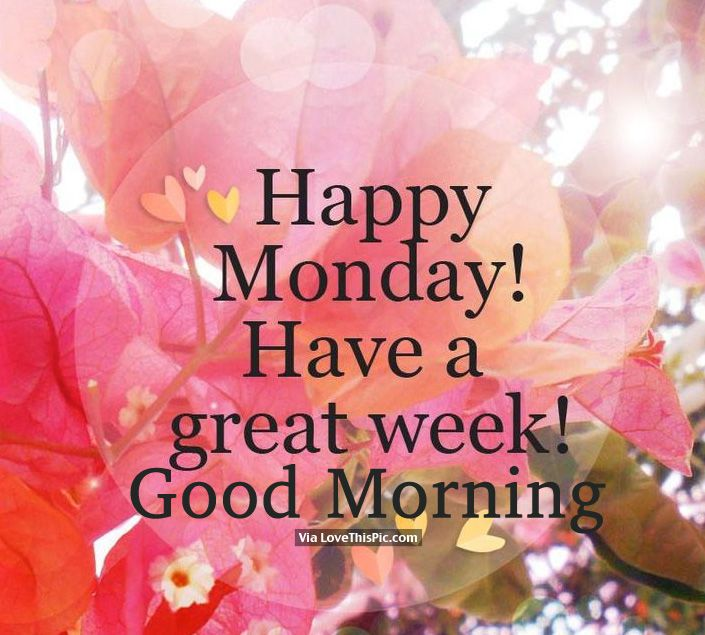 Happy Monday! Have A Great Week! Good Morning monday good morning monday images best good morning quotes good morning quotes for facebook monday morning pics monday morning pic morning quotes to start the day good morning image quotes monday image quotes good morning happy monday monday quotes and sayings