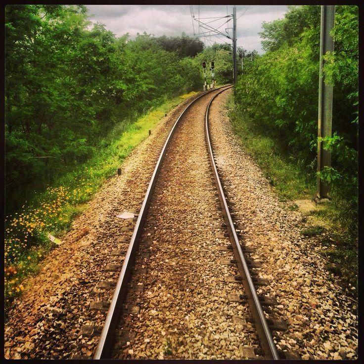 Linha da Beira Alta (foto Rosa Ramos)