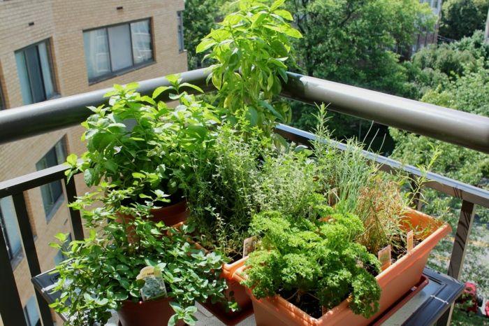 Cool Terrasse Gestalten Garten Kräuter Außenbereich Ideen