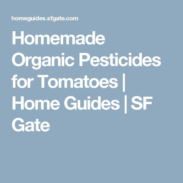Best 25 Organic Pesticides Ideas On Pinterest Gardening Tips Garlic And Aphid Spray