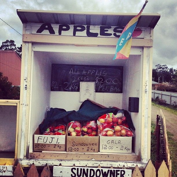 Roadside stalls grace the side of the road in Cygnet and other country towns in Tasmania. #cygnet #tasmania #apples #discovertasmania Image Credit: Tabitha Evelyn