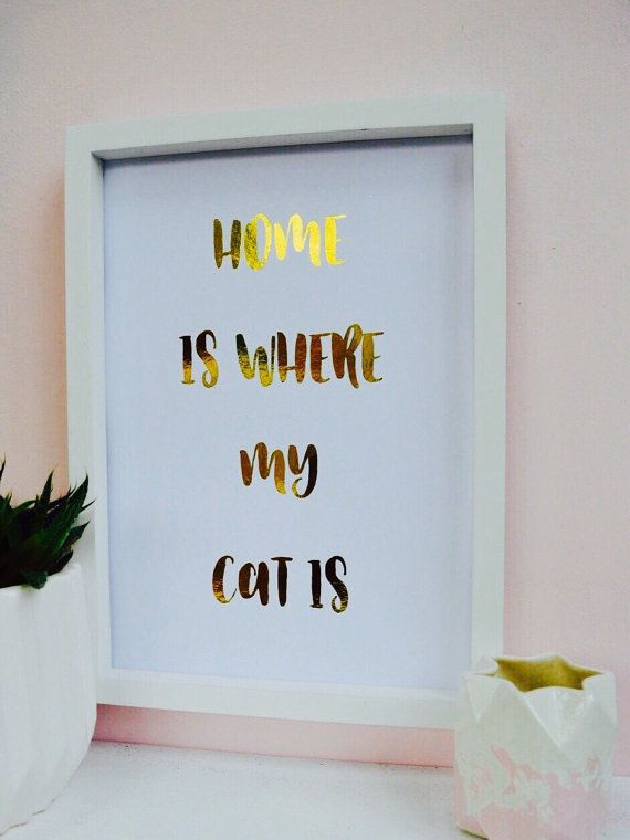 Als u meer dan één kat hebt < 3 kan ik het bewerken van dit citaat naar Home is waar mijn katten zijn gratis - message me als je zou willen zien van een ontwerp.  * Echte Folie Print * A4 297 x 210 mm en A5 210 mm x 148.5 mm * 6 verschillende kleurenkaart (gelieve nader beschouwd bij de kassa) * 16 verschillende folies * Schepen Worldwide uit het Verenigd Koninkrijk binnen 1-3 dagen. * Alle bestellingen worden verzonden met 1st Class post. * Wordt geleverd met een korting op uw volgende…
