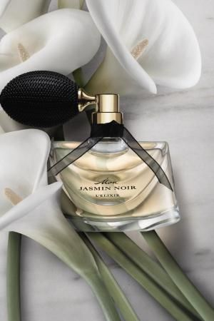 Jasmin Noir of Bulgari@image