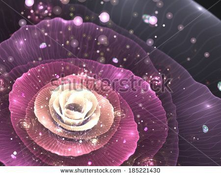 pink abstract flower with sparkles on black background, fractal illustration - stock photo