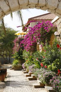 Cape Verde: Hotel Morabeza****, Santa Maria