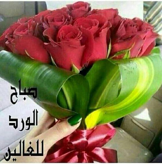 بوكيه ورد صباح الخير وأكثر من 30 مسدج رومانسي Good Morning Photos Flowers Photo
