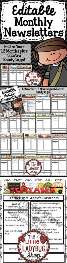 1000 ideas about newsletter templates on pinterest preschool newsletter templates preschool. Black Bedroom Furniture Sets. Home Design Ideas