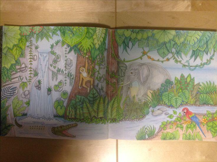 Magical Jungle, Johanna Basford, color by me (Seija)