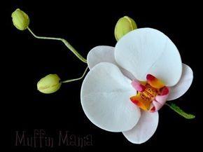 ▶ Orchidea gum paste tutorial,orchidea gum paste flower tutorial - YouTube