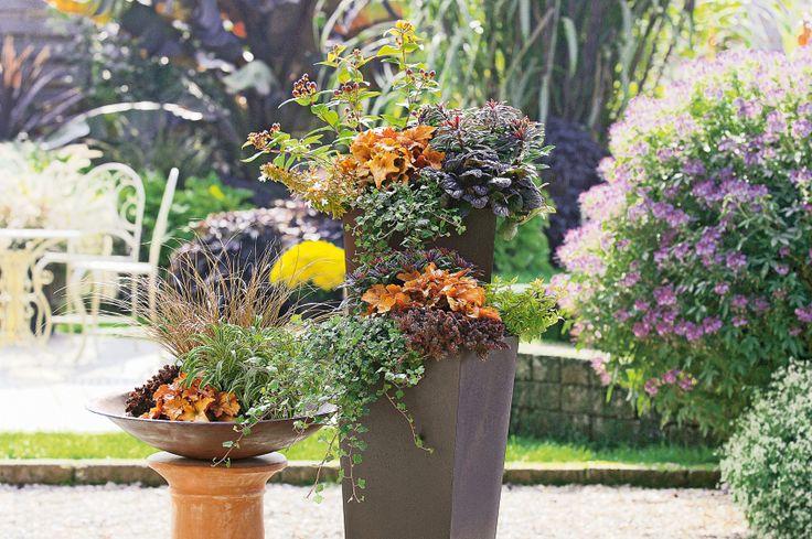 Herbstbepflanzung für eure Terasse oder den Balkon