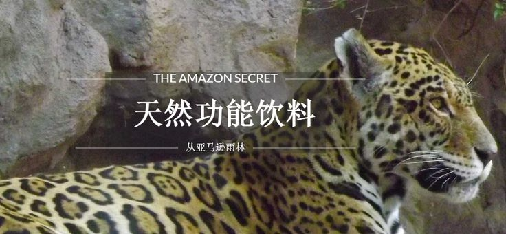 Not many Chinese here on Twitter, but our site: http://amazon-secret.com  receive one every 30 sec. 24/7, so we made it in Chinese