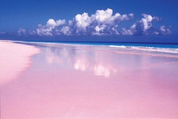 Розовый пляж на острове Харбор, Багамские острова