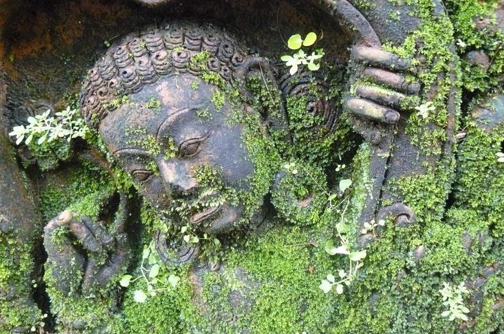 terracotta figure with emerging plants, Chiang Mai by lightfan