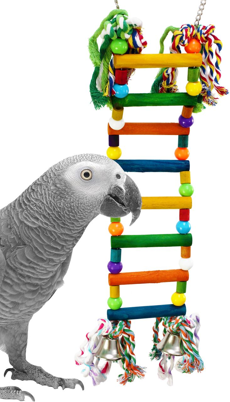 1385 Large beaded ladder is a multi-purpose ladder full of healthy play activities for your medium-sized feathered friend.