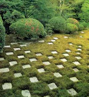 Chequerboard of moss and stone.  Interesting and tough alternative for shade...