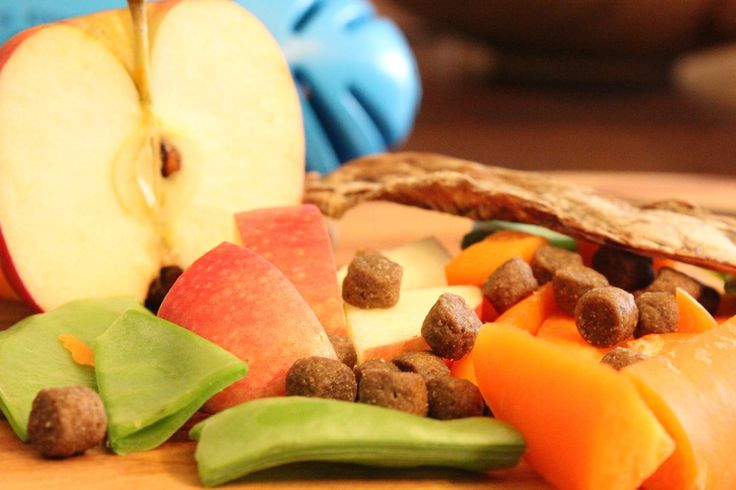 A selection of fruits and vegetables can be a healthy treat between meals. Places these in an enrichment toy to enhance mental stimulation for your dog.