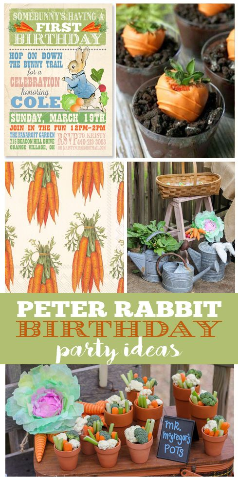 Peter Rabbit Birthday Party Ideas - The Single Mom Creative