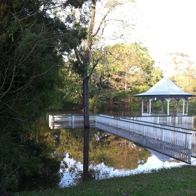 Backyard Bayou Union City Ca: 17 Best Images About Places I've Lived... On Pinterest