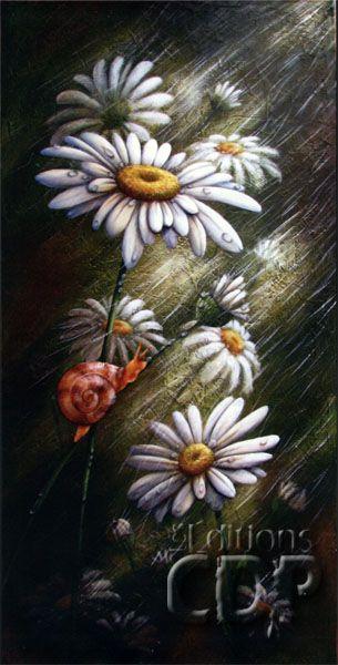 Marguerites parapluie par Julie Duplantie