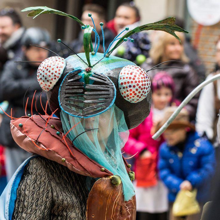 Solothurner Fastnacht | Carnival Parade in Solothurn 2014 | Flickr - Photo Sharing!