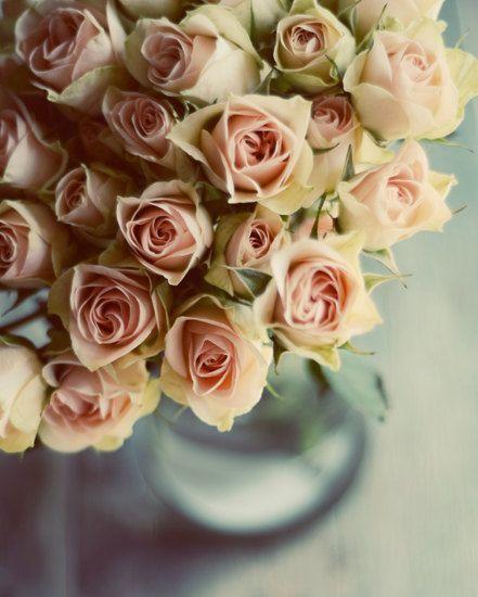 Floral kwekerij kunst roze bloem kunst cottage door dullbluelight