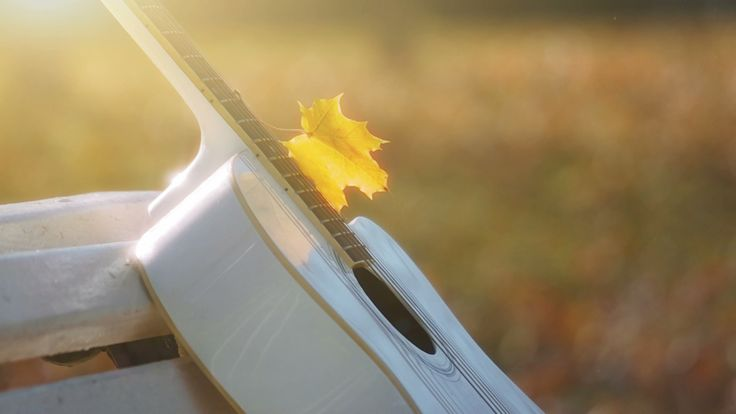 Autumn Melody, White Guitar in Sunlight - video by TS_media on @pond5