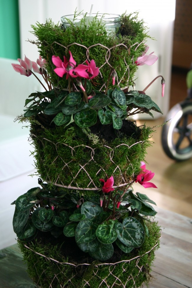 31 best MOSS ARRANGEMENTS images on Pinterest | Flowers garden ...
