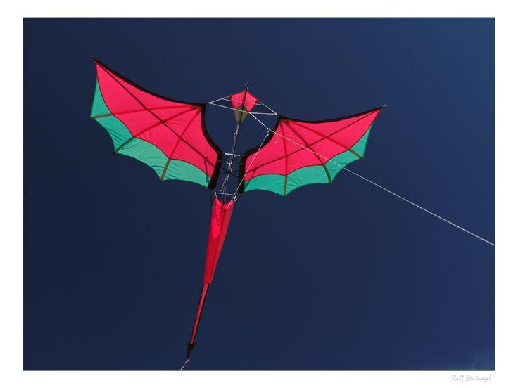 https://flic.kr/p/cooh1y | Demon | The Demon was designed by Marcus J. Ertl (Tiggr / colorful-sky). This kite was built in the Kite Workshop Rodgau 2011by Friedrich von Holst (Billigflieger).