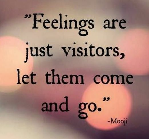 338 Best Images About Quotes On Pinterest