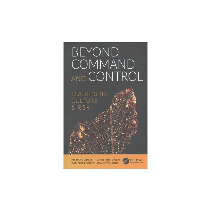Beyond Command and Control : Leadership, Culture and Risk (Paperback) (Richard Adams & Christine Owen &