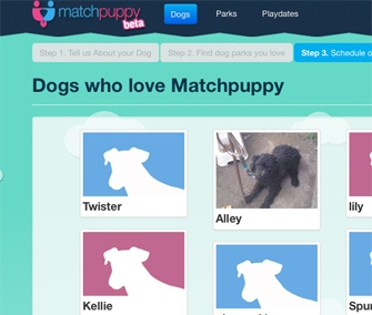Online dating sites pets — photo 5