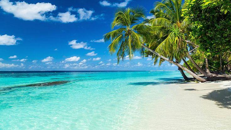10 #destinations #soleil où #voyager cet #hiver
