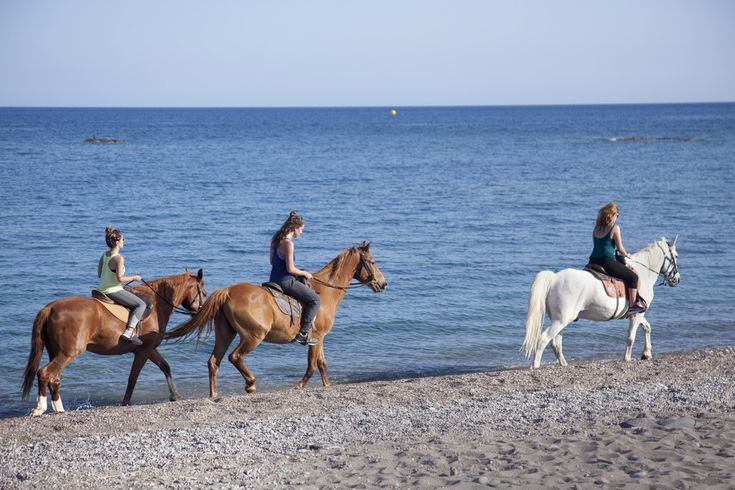 Horse back riding in south of Rhodes - 85€ per adult